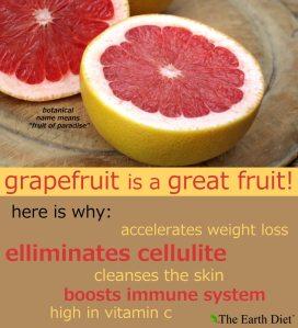 GrapefruitGreatFruit